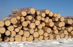 Трупи за дървени играчки